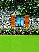 緑の植物 石 壁 背景 緑 芝生 花 背景 屋外 春 写真 背景 子供 写真 スタジオ小道具 背景