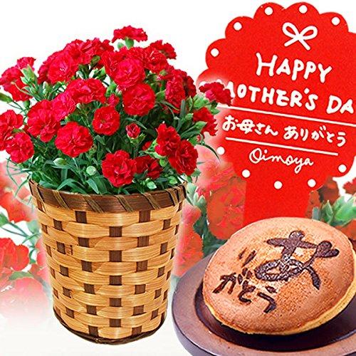 母の日ギフト カーネーション鉢花とスイーツセット 花とスイー...