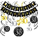 Konsait 30th Birthday Decorations Kit Cheers to 30 Years Banner Swallowtail Bunting Garland Sparkling Celebration 30 Hanging Swirls,Perfect 30 Years Old Party Supplies 30th Anniversary Decorations