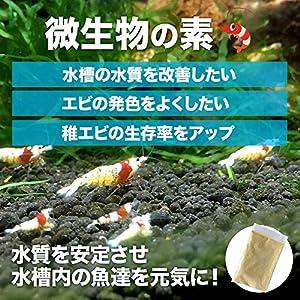 o-o-(オーオー) 微生物の素 10gエビ エサ 水質改善 生存率アップ