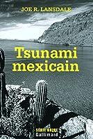 Tsunami mexicain