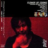 宇宙の花 FLOWER OF COSMIC