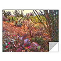 ArtWall Artapeelz Dean Uhlinger 'Sonoran Spring' Removable Graphic Wall Art, 36 48-Inch [並行輸入品]