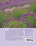 The Lavender Lover's Handbook: The 100 Most Beautiful and Fragrant Varieties for Growing, Crafting, and Cooking 画像