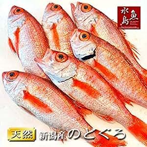 魚水島 のどぐろ 新潟・日本海産 ノドグロ 200g以上・6尾(生冷凍)