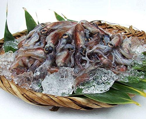 [生冷凍]蛍烏賊(ホタルイカ)1kgセット山陰沖産フォーシーズンB級品