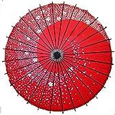 踊り傘 和傘 桜吹雪 紅色