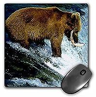 3drose LLC 8x 8x 0.25インチマウスパッド、ブラウンBear Fishing (MP 652_ 1)