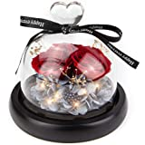 Fresh Flower Handmade Eternal Rose - Kylin Glory Preserved Flowers with LED Mood Lights Gift Box Exquisite Present for Valent