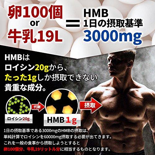 『HMBプレミアムセレクト【HMBCa90,000mg/クレアチン31,500mg/BCAA31,500mg/ビタミンD】大容量450粒の決定版HMBサプリ』の4枚目の画像