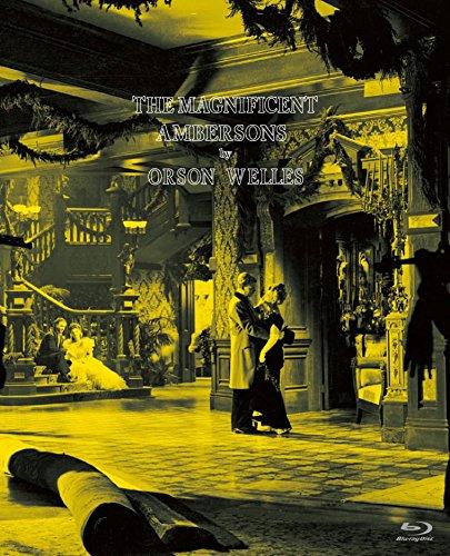 [画像:偉大なるアンバーソン家の人々  Blu-ray]