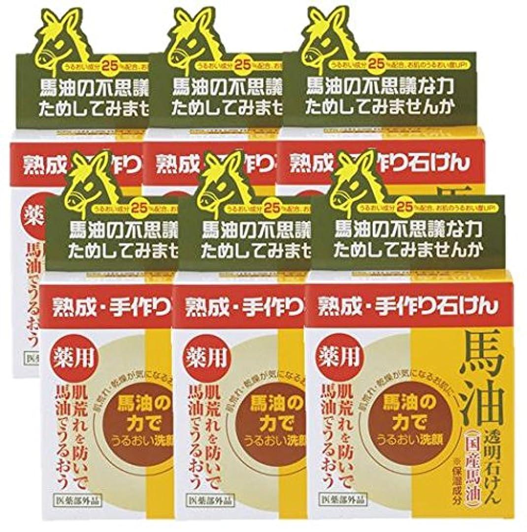 インフルエンザ孤独な表面ユゼ薬用馬油透明石けん100g×6個セット