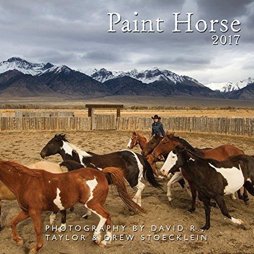 Paint Horse 2017 Calendar
