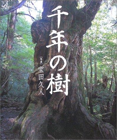 千年の樹―南から北へ日本の巨木をたずねる