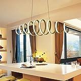 Modern LED Pendant Light for Dining Room Kitchen Living Room, White Acrylic Metal Spiral Hanging Light for Café Bars Restaura