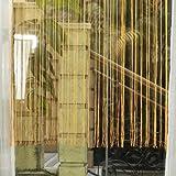 JX-SHOPPU 風に揺られて涼しげな雰囲気にストリングカーテン 窓辺やお部屋の間切りにぴったりスクリーンタペストリー 紐カーテン【サイズ:100cm×200cm】