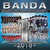 Banda #1's 2016