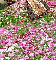 Wapel 壁画の 610 d 壁紙カスタム サイズ 3 D 床壁画植物花子供部屋のための 3 D 立体 3 D フロアー リング壁紙 250x175cm