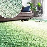 【3サイズ展開】 ラグ グラデーション 夏でもサラサラ 防音 贅沢ボリューム ほっとカーペット対応 カーペット 絨毯 夏 長方形 L 200×250 3畳 グリーン
