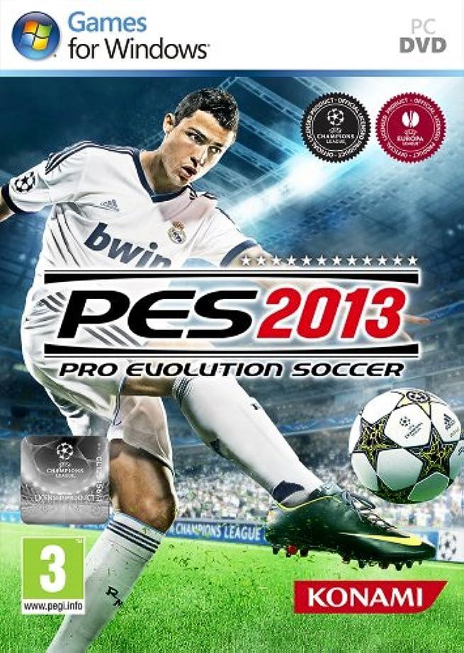 同情的テクトニックリンケージPro Evolution Soccer 2013 (輸入版)