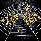 Urhomy 蜘蛛の巣 巨大 クモ 蜘蛛の糸 ハロウィン小道具 クモネット装飾 蜘蛛 ハロウィン 屋外 庭 玄関 飾り 飾り物 飾り付け 装飾 ホラー クモの巣装飾 ハロウィーンクモの巣ストレッチ 屋外屋内ヤード お化け屋敷 ハロウィンデコレーション クモフィギュア インテリア 学園祭