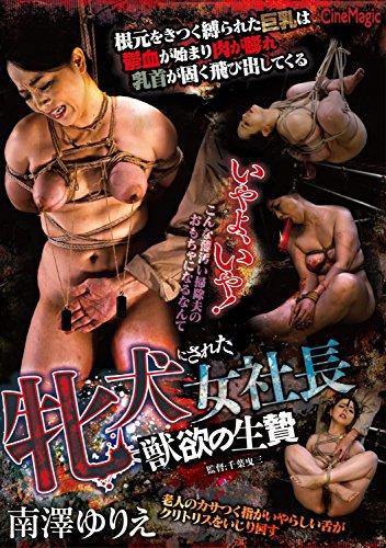 牝犬にされた女社長 獣欲の生贄 南澤ゆりえ シネマジック [DVD]