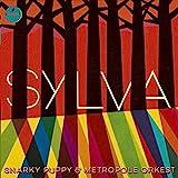 Sylva [12 inch Analog]
