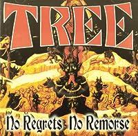 No Regrets No Remorse