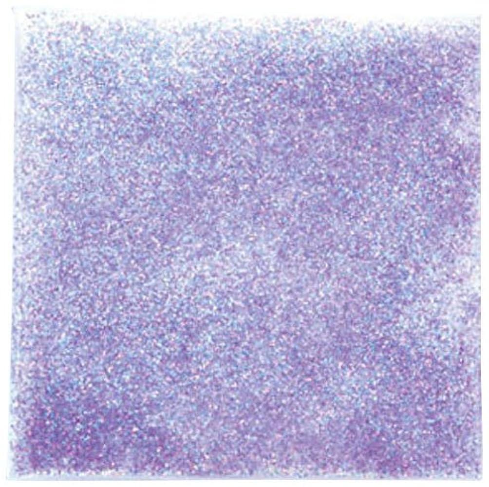 スキニー断片スワップピカエース ネイル用パウダー ラメパステルレインボー S #446 パープル 0.7g
