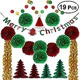 Tinksky 19個ティッシュペーパーの花ポンポン付きクリスマスツリーDIYペーパーガーランドタッセルMerryクリスマスバナーキットクリスマスパーティー装飾