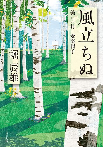風立ちぬ・美しい村・麦藁帽子 (角川文庫)の詳細を見る