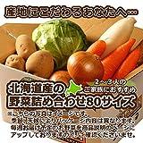 北海道産 野菜セット 旬の新鮮お野菜詰め合わせ 5品種以上 80サイズ 約3〜4kg 調理しやすい常備野菜がメインのつめあわせ