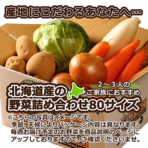 北海道産 野菜セット 旬の新鮮お野菜詰め合わせ 5品種以上 80サイズ 約4〜5kg 調理しやすい常備野菜がメインのつめあわせ