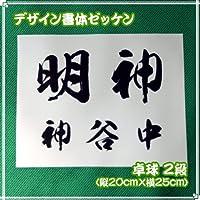 ゼッケン(卓球用2段組/デザイン書体)W25cm×H20cm 文字カラー 赤 書体 豪龍(筆文字)
