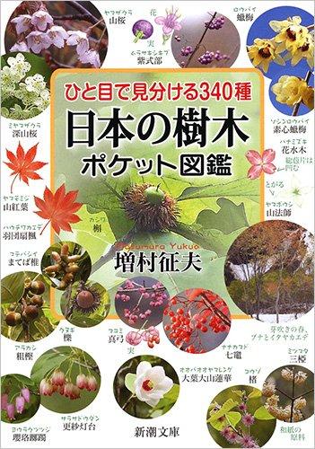 ひと目で見分ける340種 日本の樹木ポケット図鑑 (新潮文庫)の詳細を見る