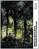 Roberto Burle Marx: The Modernity of Landscape [ペーパーバック] / Lauro Cavalcanti (編集); Actar (刊)