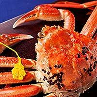 ますよね【蟹の王者 越前ガニ】茹でたて産地直送!!越前がに700g前後 越前蟹