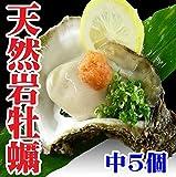 岩ガキ(岩牡蠣) 天然 生食 山形県産 中5個 約1㎏ カラ割り お中元 牡蠣 殻付き