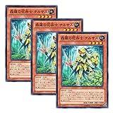 3枚 遊戯王 日本語版 LVAL-JP018 Sylvan Flowerknight 森羅の花卉士 ナルサス (ノーマル)