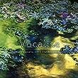 Vocalise ~ヴァイオリンで紡ぐ詩~