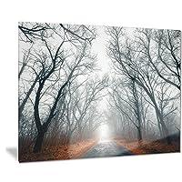 DesignArt Mystic Road In Forest L & Scapeフォトメタルウォールアート–mt8442 28x12 MT8442-28-12