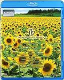 花‾Scenery with Flowers‾ V-music [Blu-ray] ユーチューブ 音楽 試聴