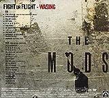 FIGHT OR FLIGHT-WASING(DVD付) 画像