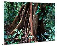 緑色の森林、美しい木 - (N007) - 自然 風景 壁掛け式の装飾画 印刷の絵 ポスター(30cmx40cmx2.5cm)
