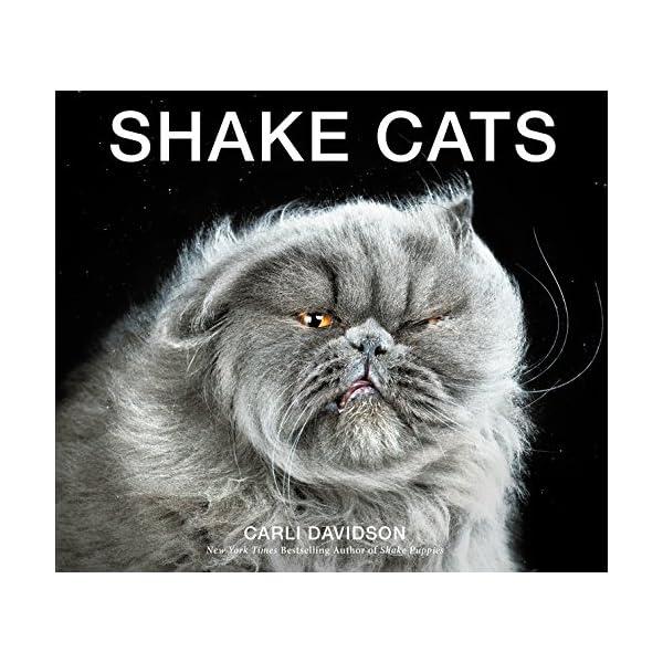 Shake Catsの商品画像