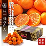 和歌山県産 マルカイ 味一番 みかん S~Mサイズ 約5kg 詰め合わせ