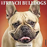 Just French Bulldogs 2018 Calendar