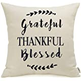 Meekio Farmhouse Pillow Covers Decorative Throw Pillow Covers with Quotes 18 x 18 Grateful Thankful Blessed Quote Print