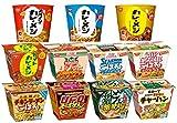 日清 カレーメシ・ごはんシリーズ 6種類(各1個) (種類は当店任せになります)