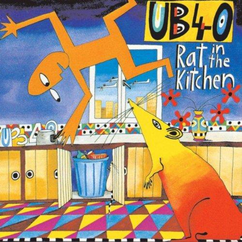 Rat In The Kitchenhttp://r2.um...